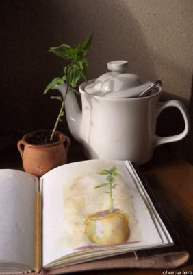 Cuaderno de apuntes: Pequeña historia
