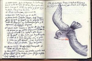 Haiku ilustrado con dibujo de cuaderno