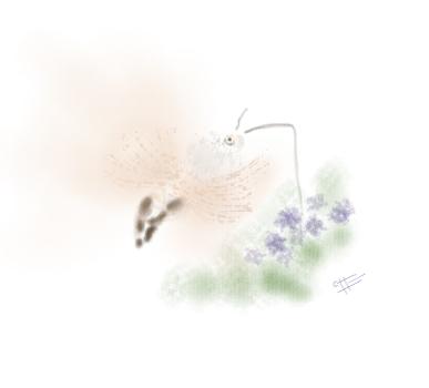 La fantástica Esfinge colibrí